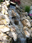 Natural pond design in queens